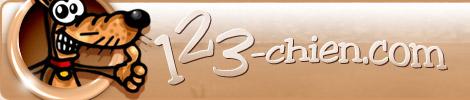 banniere-123chien-com.jpg