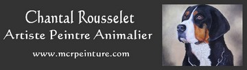 Chantal Rousselet - artiste peintre animalier