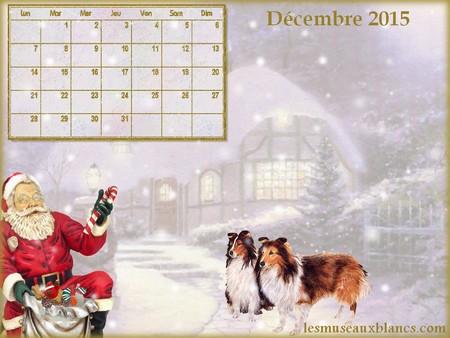 Calendrier chien decembre 2015