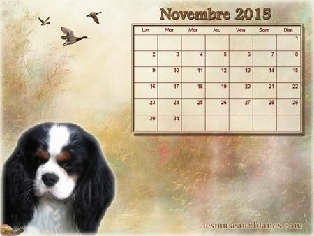 Calendrier chien novembre 2015