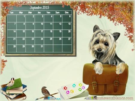Calendrier chien septembre 2015