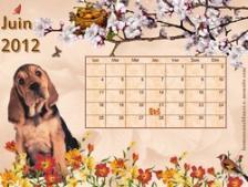 calendrier-juin-2012.jpg