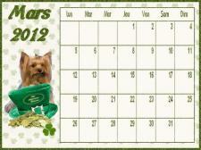 calendrier-mars-2012-yorkshire-petit.jpg