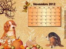 calendrier-novembre-2012-chien.jpg