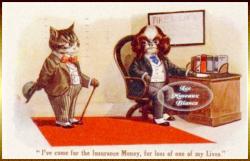 chien-et-chat-humanises-assurance.png