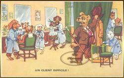 chien-humanise-coiffeur.png