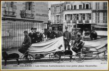 chiens-ambulanciers-orleans.jpg