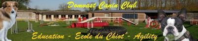 Domvast canin Club