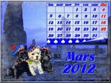 mars-2012-calendrier-terrier-ecossais-petit.jpg