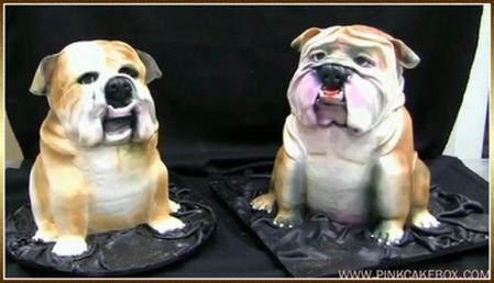 pink-cake-box-bulldog-chien-gateau.jpg
