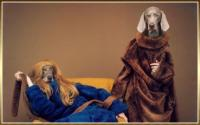 william-wegman-3.jpg